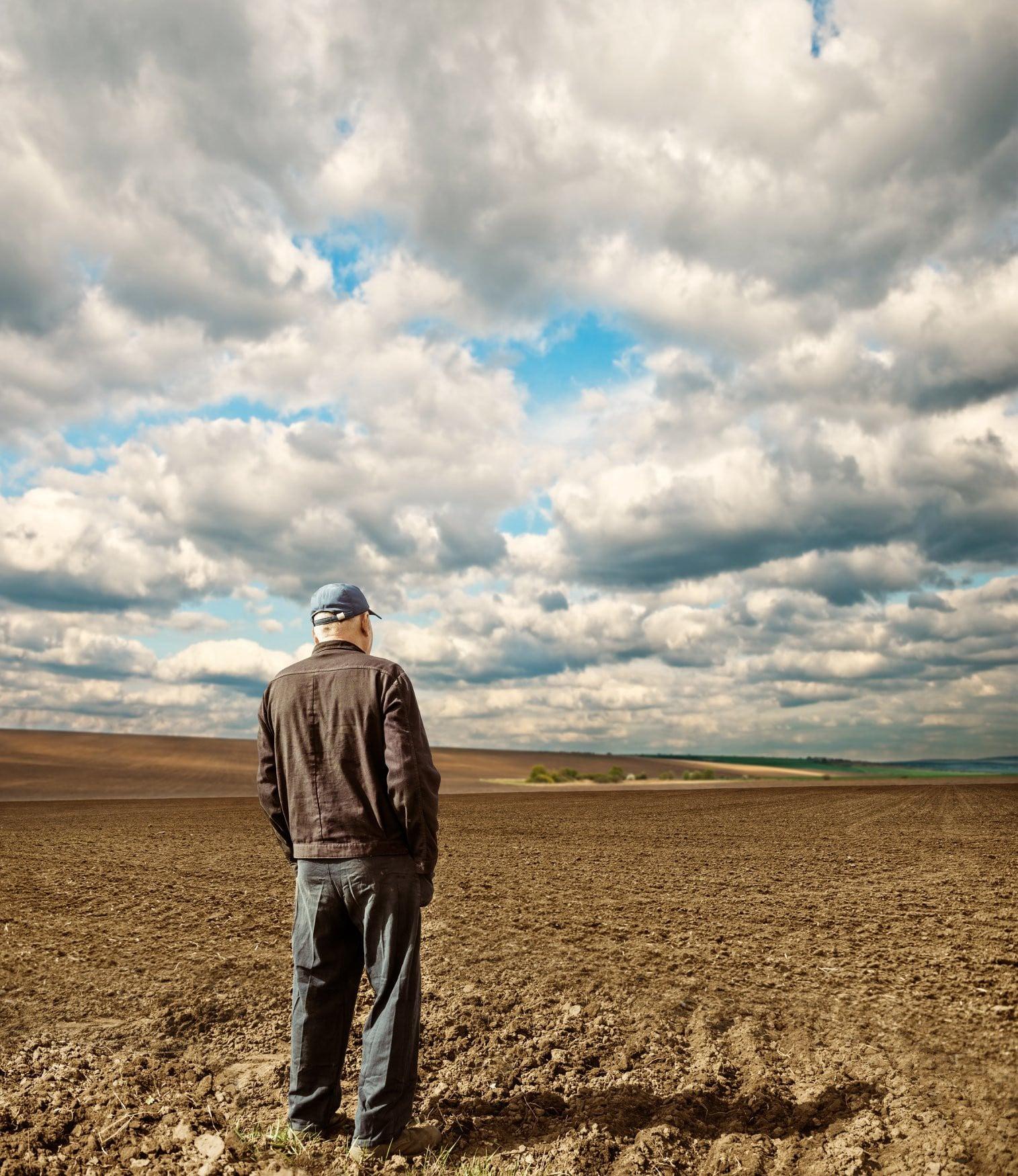Farmer looking into field